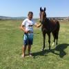 Продавам чистокръвна-английска кобила на 2 години