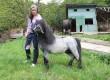 Продавам пони